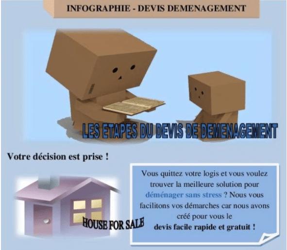 Infographie : les étapes du devis de déménagement en ligne