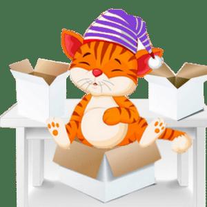 Comment déménager avec un chat